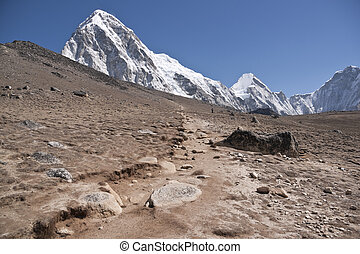Path in the Himalayas