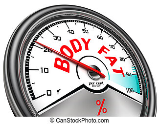 body fat conceptual meter - body fat conceptual indicator...