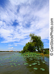 river summer scenery under the blue sky, Luannan, china
