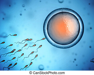 sperm and egg cell 3d illustration