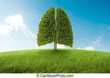 The lungs of Earth - Tree with form of lungs, oxygen for the...