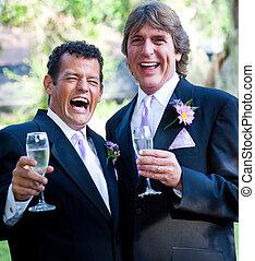 homossexual, casório, -, champanhe, risada
