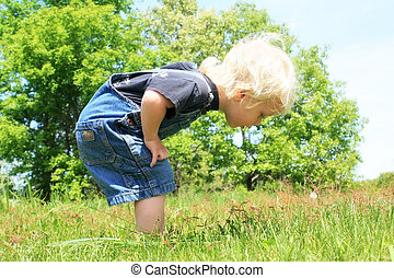 Little Boy looking at Somehing in the Grass - A little...