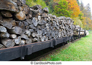Freight train loaded with beech trunks.