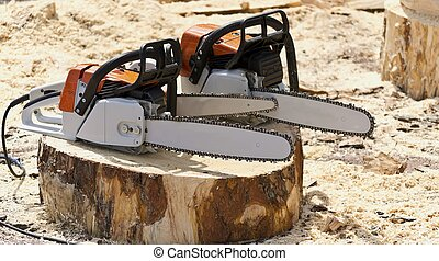 Chain saws for working with wood on a freshly felled tree...