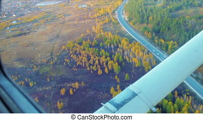 Autumn forest and road low fly aerial shot
