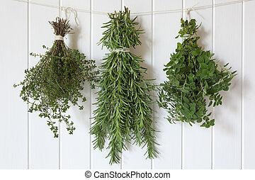 Fresh Herbs Hanging