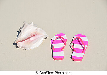 Sea shell and flip-flops on the sandy beach