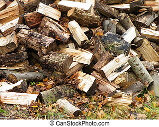 Logs - winter logpile with autumn leaves