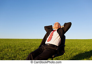 Businessman On Chair In Grassy Field - Mature businessman...