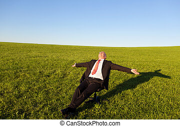 Businessman With Arms Outstretched On Chair In Grassy Field...