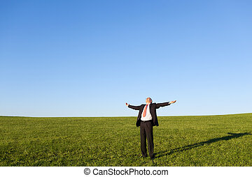 Businessman With Arms Outstretched Standing In Field -...