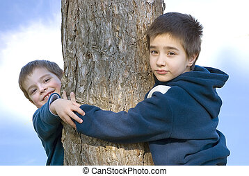 Boys hugging a tree - two boys hugging a tree on a sunny day