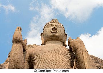 Avukana standing Buddha statue, Sri Lanka. - Avukana...