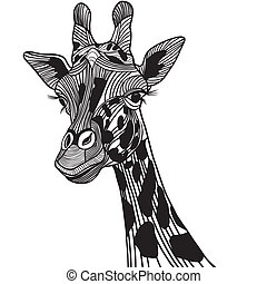 Giraffe head vector animal illustration for t-shirt. Sketch...