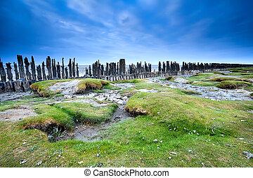 sea shore at low tide, Friesland, Netherlands - sea shore at...