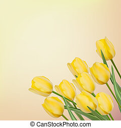Spring background with beautiful tulips. EPS 8