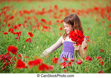 Young girl picking flowers - Young girl picking red poppies...