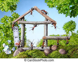 team of ants constructing wooden house, teamwork - team of...