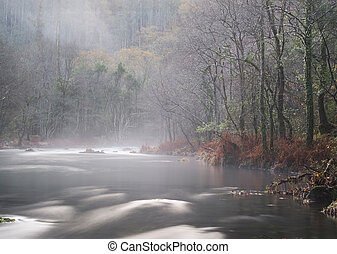 Mist river in Galicia, Spain This river is called Eume river...