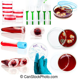 set of laboratory supplies. Petri dish, Spectrophotometer...