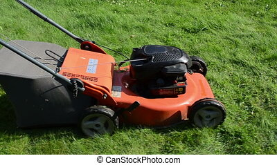 walk grass mower meadow - walk near moving cut grass lawn...