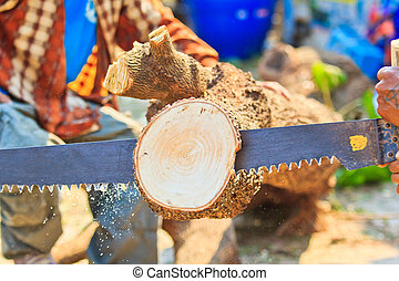 Logger  man cutting wood