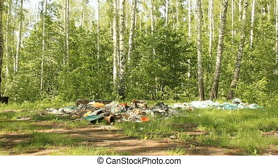 Garbage dump in the woods. Environmental contamination