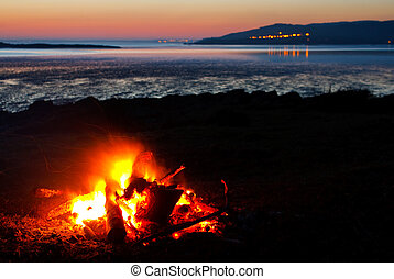 roaring bonfire at the beach - Roaring camp fire of real...