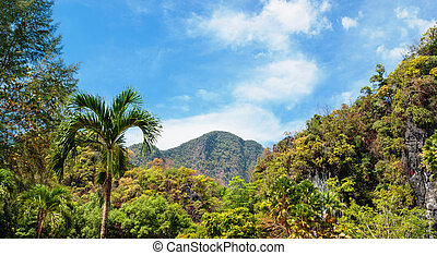 Tropical landscape in Thailand - Tropical landscape in...