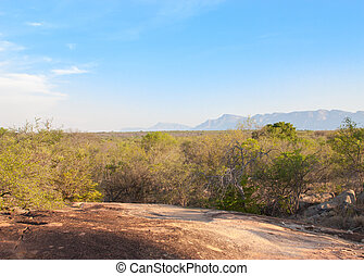 south african landscape in UAR, Kruger's park