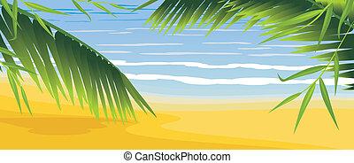 Palms on the coastline