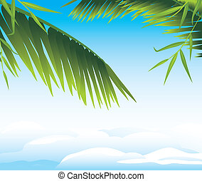 Palm branches on the cloudscape background. Vector...