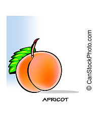 Apricot - A juicy, soft fruit, resembling a small peach, of...