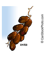 dark dates - a sweet, dark brown, oval fruit containing a...
