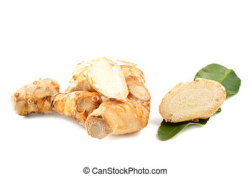 Galangal root, kaffir lime leaves on a white background