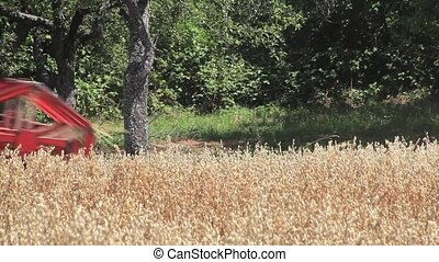Oat Harvesting