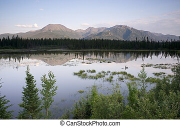 Scenic Marsh Water Panoramic Mountain Landscape Outback...