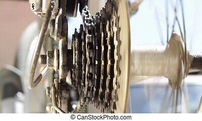 Pinion and chain - Mountain bike cassette with chain close...