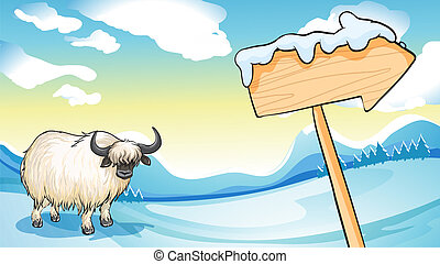A bison near the wooden arrowboard