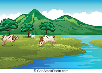 Cows and goat at the riverbank - Illustration of the cows...