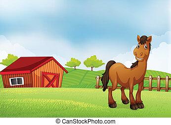 A horse at the farm