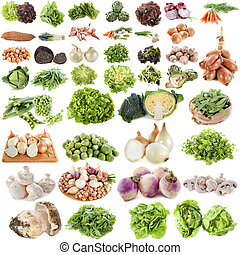 group of vegetables in front of white background