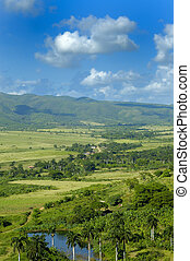 Cuban countryside landscape