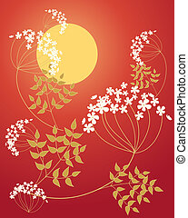 cow parsley - an illustration of stylized cow parsley...