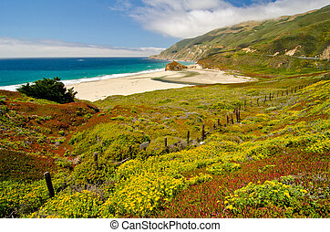 Scenic Vista on California State Route 1 - California SR1 is...