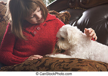 Young Girls with Her Maltese Puppy - Young Girls Poses with...