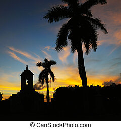Cuban landscape - Silhouette of church and royal palm trees...