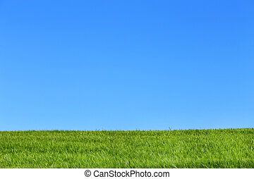 領域, 摘要, 大麥, 圖像