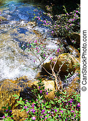 Water flowing between rocks - Water flowing on a stream with...